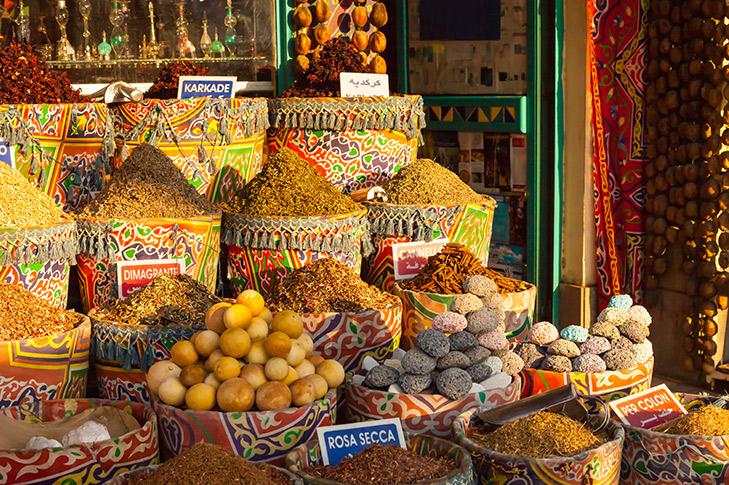 Aswan Highlights