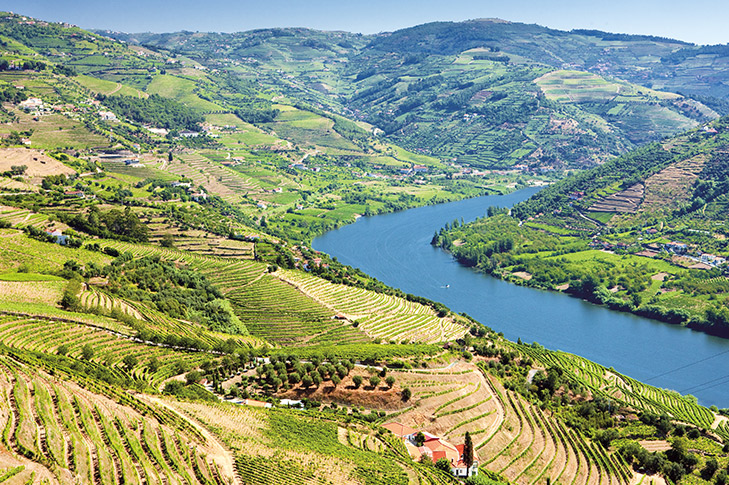 The Golden River - Valley of the Douro Package