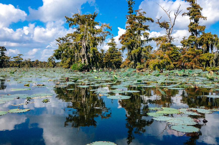 USA - Scenic Louisiana swamp and a traditional Southern plantation