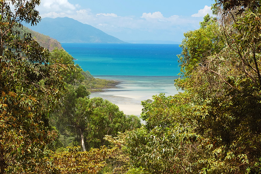 Australia - Daintree Rainforest and Cruise including Lunch - Cairns