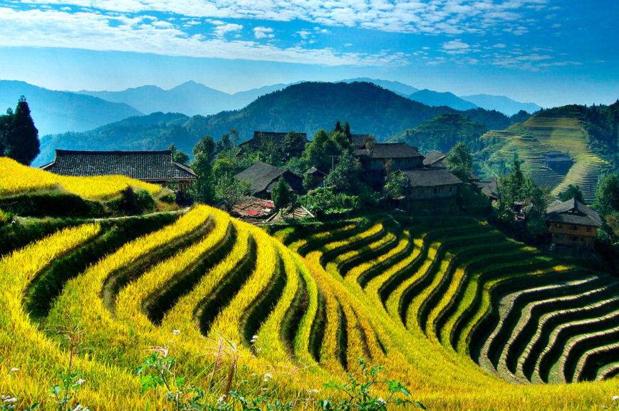 China - Longsheng Rice Terrace