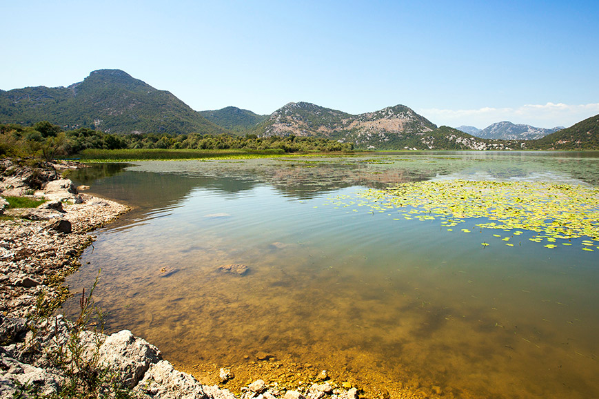 Montenegro - Picturesque Skadar Lake