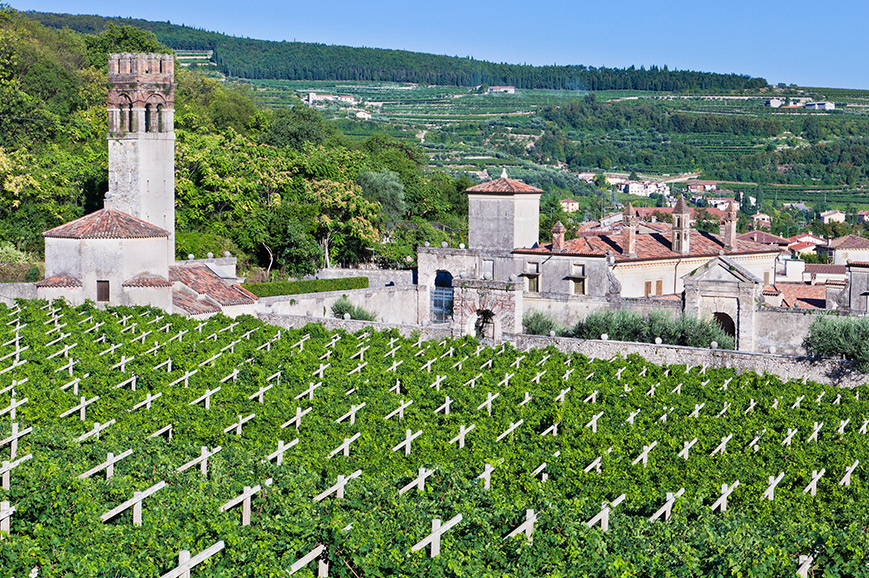Valpolicella Wine Region - Prebookable Only