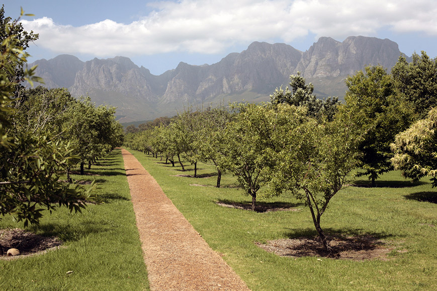 South Africa - Winelands Tour and Tasting