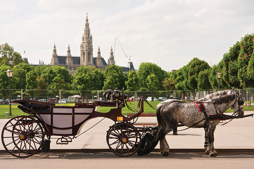 Austria - Tour of Vienna with Fiaker Horse and Carriage ride