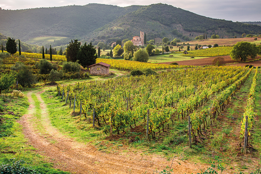 Italy - Medieval Montalcino and Siena