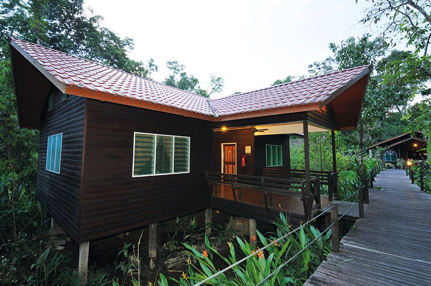 abai-jungle-lodge-abai-1.jpg