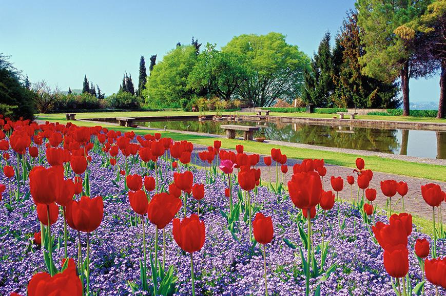 Sigurta gardens