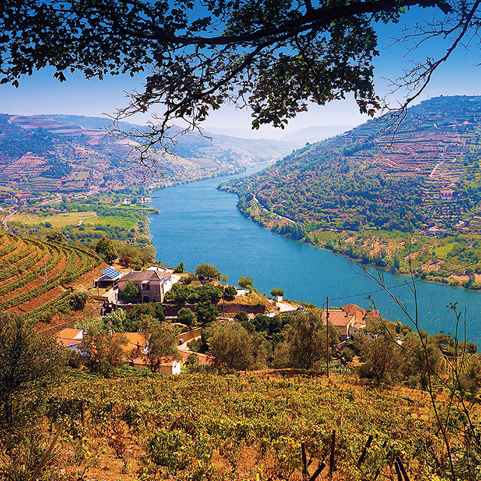 The Golden River - Valley of the Douro