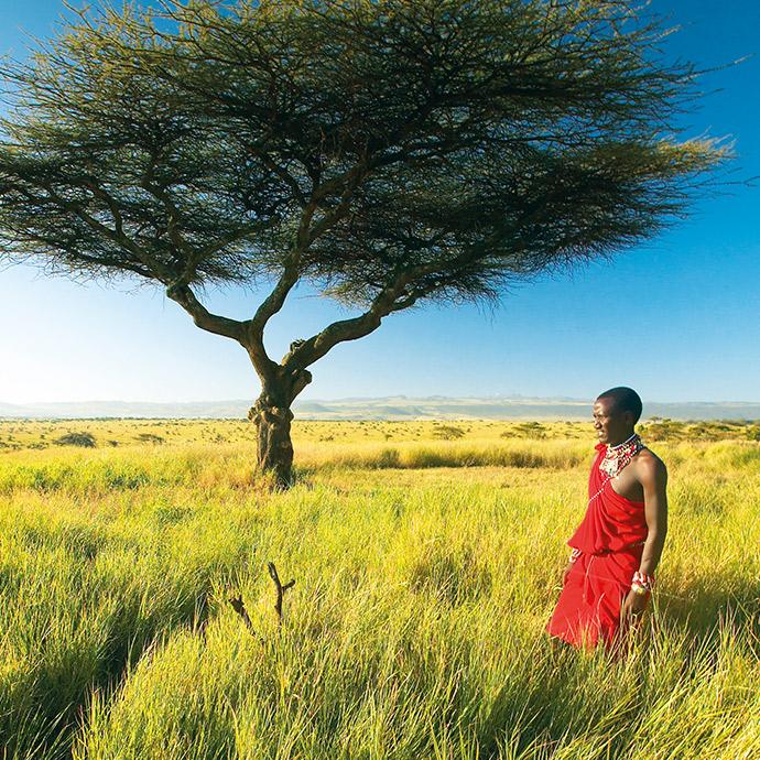 Tanzania Serengeti Safari
