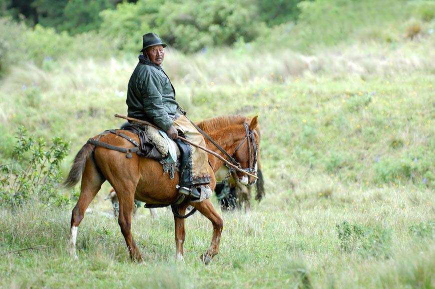 Gaucho, Estancia ranch