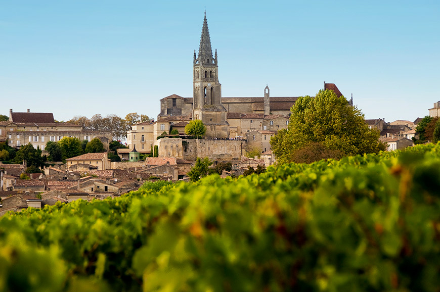 Vineyard, St Emilion