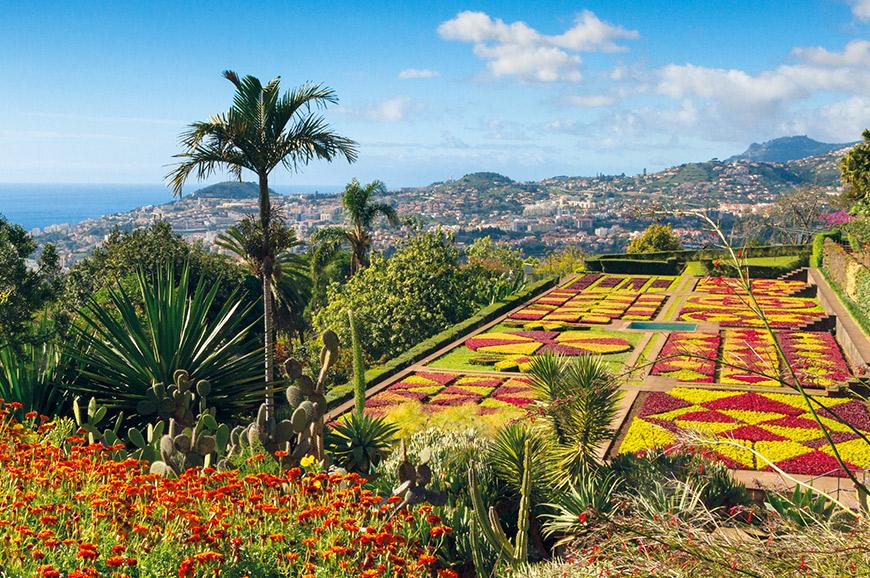 Botanical Gardens, Funchal